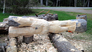 log carving day 1