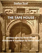 cover of the safe house